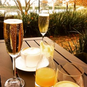 Prost! Bubbly on the deck overlooking the winter garden The Bakery @ Jordan