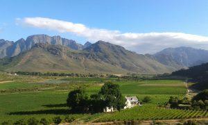 glenwood wine estate robertsvlei franschhoek sonia cabano blog eatdrinkcapetown